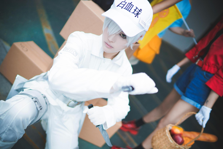 《工作细胞》正片cosplay【CN:枫鵺rain】-第3张